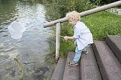 Junge fischt mit Netz