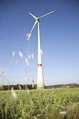 Wiese mit Windrafanlage