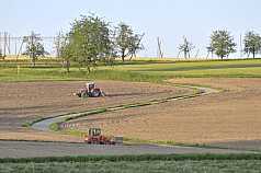 Tracktor pflügt Feld