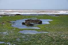 Küste Marokko