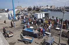 Fischverkauf Marokko