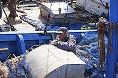 marokkanischer Hafenarbeiter