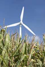 Windkraftrad auf Feld