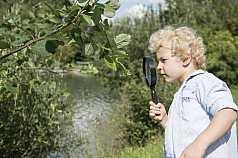 kleiner Junge untersucht die Natur