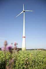 Windkraftanlage im Grünen