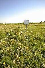 Schild: Baugrundstück zu verkaufen