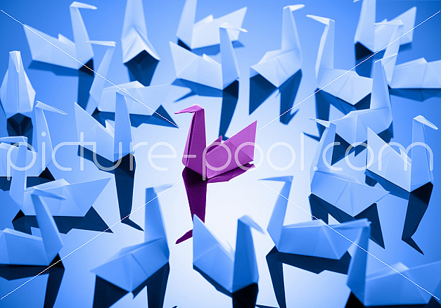 Origami Schwan Aus Papier Gefaltet Picture Pool